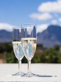 South African white sparkling wine in a garden Royalty Free Stock Image