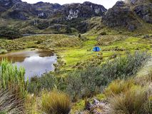 Toreadora lake lagoon and camping at National Park El Cajas, Andean Highlands, Ecuador stock photos
