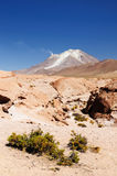 South America, Bolivia expedition Royalty Free Stock Photo
