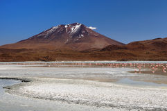 South America, Bolivia expedition Stock Image
