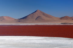 South America, Bolivia expedition Stock Photo