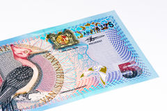 South America currancy banknote Royalty Free Stock Photos