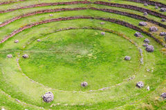 South America, Moray, Cusco, Peru Stock Image