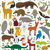 South America seamless pattern sloth anteater toucan lama bat fur seal armadillo boa manatee dolphin Maned wolf jaguar macaw lizar. D turtle crocodile deer Stock Photos