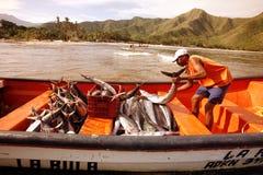 SOUTH AMERICA VENEZUELA CHUAO COAST Stock Photo