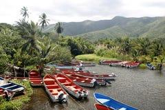 SOUTH AMERICA VENEZUELA CHUAO COAST Stock Image