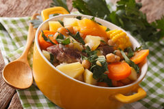 South American cuisine: thick soup Pouchero close-up in a pot. h royalty free stock image