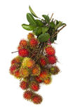 South american exotic fruit. S Lichas isolated Royalty Free Stock Photo
