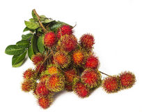 South american exotic fruit. S Lichas isolated Stock Photography