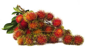 South american exotic frut. South american exotic fruits Lichas isolated Royalty Free Stock Image