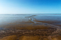 South American Mudflats Royalty Free Stock Images