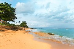 Tropical beach with yellow sand, azure ocean and green trees. South Asian tropical beach with yellow sand, azure ocean with foamy waves, green trees and colorful Stock Images
