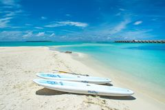 Stand up paddle board - SUP boards on a sandy beach. South Atoll, Dhidhoofinolhu, Maldives - 24 June 2017: Stand up paddle board - SUP boards on a sandy beach stock photography