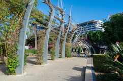 South Bank Grand Arbour running the length of South Bank parklands. Royalty Free Stock Image