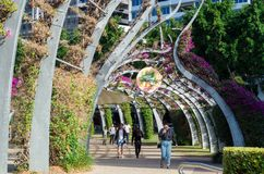 South Bank Grand Arbour running the length of South Bank parklands. Brisbane, Australia - July 9, 2017: The Arbour is a pedestrian walkway running the length of Stock Photos