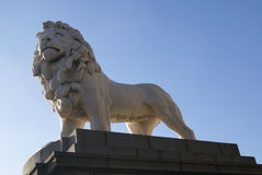 South Bank Lion.  The Red Lion in London, England Royalty Free Stock Images
