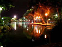 South Bank Parklands. Night scene in the South Bank Parklands, Brisbane, Queensland, Australia, tropical palms and reflections in the water royalty free stock image