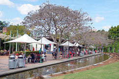 South Bank Parklands - Brisbane Australia Stock Image