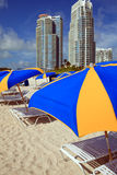 South Beach Umbrellas and Lounge Chairs Royalty Free Stock Image