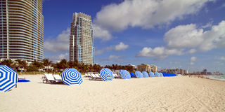 South Beach Umbrellas and Lounge Chairs. Rows of lounge chairs and umbrellas in South Beach, Miami with condos in the background stock image