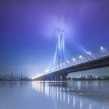South bridge in winter. Royalty Free Stock Photo