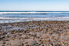 South Carlsbad State Beach with Colorful Stones Covering Beach stock photos