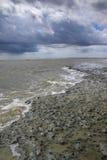South Carolina Coastal Mud Flats Stock Photos