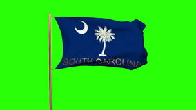 South carolina flag with title waving in the wind stock video