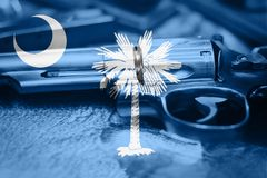 South Carolina flag U.S. state Gun Control USA. United States. Gun Laws Stock Image