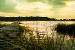 Wooden pier in south carolina low country marsh at sunset with green grass. South carolina flooded marsh after hurricane at sunset with cloudy sky royalty free stock image