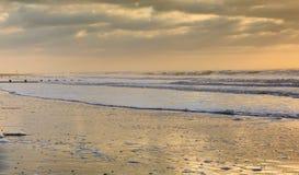 South Carolina Golden Seascape Altantic Ocean Stock Photos