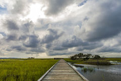 South Carolina lowcountry Royalty Free Stock Images