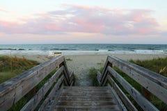 South Carolina nature background. Stock Photo