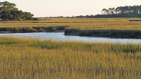 South Carolina Salt Marsh Stock Photography