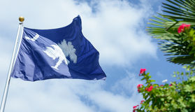 South Carolina State Flag with sky background and palm with red flowers Stock Photo