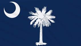 South- Carolinaflagge flattert im Wind, Schleife für Hintergrund stock video