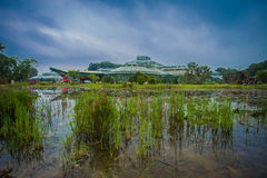 South China Botanical Garden. Is a good place to study in China, casual good place stock images