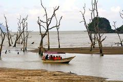 South China Sea, Borneo, Malaysia Royalty Free Stock Photography