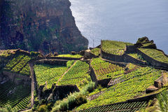 South coast of Madeira island Stock Images