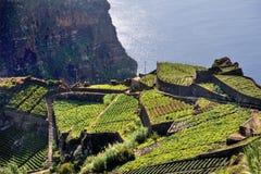 South coast of Madeira island stock images