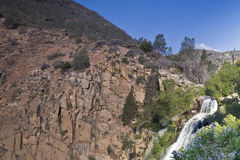 South Creek Falls. Waterfall in the Kern River Valley of California with blue flowers Royalty Free Stock Images
