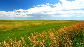 South Dakota Prairie Scenery stock video footage