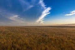 South Dakota USA arkivfoton