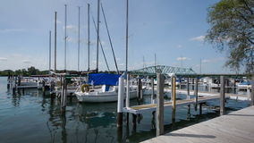 South Detroit River Marina stock video