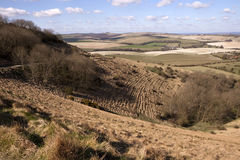 South Downs Stock Image