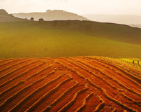 South downs. View from the south downs way footpath, sussex, england uk Royalty Free Stock Photos