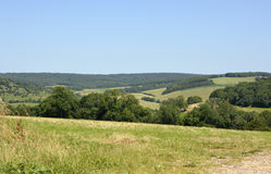 South Downs countryside at Goodwood, England Stock Photos