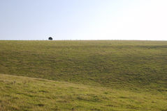South Downs countryside near Worthing. England Royalty Free Stock Image