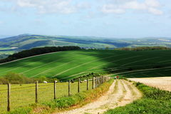 South Downs national park Royalty Free Stock Photography