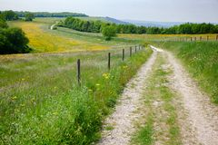 South Downs Way National Trail in Sussex Southern England UK. South Downs Way, a long distance footpath and bridleway along the South Downs hills in Sussex stock photo